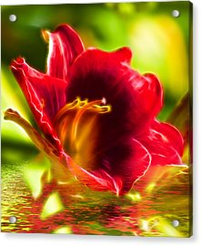 Floral Fractals And Floods Digital Art Acrylic Print by David French