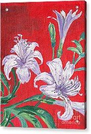 Flowers Acrylic Print by Kostas Dendrinos