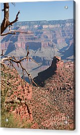 Grand Canyon National Park Usa Arizona Acrylic Print by Audrey Campion