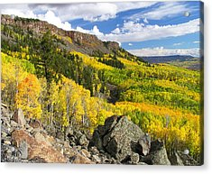 Grand Mesa Autumn Vista Acrylic Print