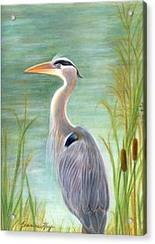 Great Blue Heron Watches By Pond Acrylic Print by Jeanne Kay Juhos