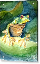Green Tree Frog Acrylic Print by Therese Alcorn