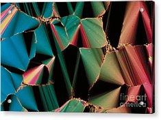 Liquid Crystalline Dna Acrylic Print by Michael W. Davidson