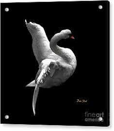 Acrylic Print featuring the digital art Majestic Swan 2 by Dale   Ford