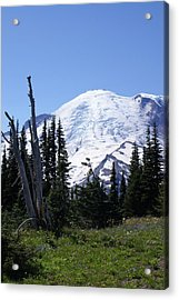 Mt. Rainier Acrylic Print by Jerry Cahill