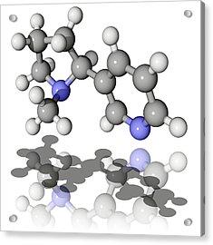 Nicotine Molecule Acrylic Print by Laguna Design