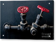 2 Red Valves Acrylic Print by Dan Holm