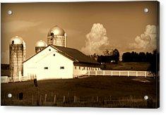 Cattle Farm Mornings Acrylic Print by Karen Wiles