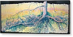 Rooted In Time Acrylic Print by Carolyn Rosenberger