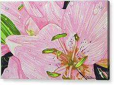 Acrylic Print featuring the painting Rosita  by Debi Singer