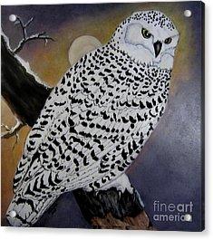 Snowy Owl And Moon Acrylic Print by Sandra Maddox