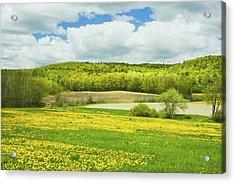 Spring Farm Landscape In Maine Acrylic Print by Keith Webber Jr