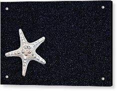 Starfish On Black Sand Acrylic Print by Joana Kruse