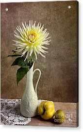 Still Life With Dahila Acrylic Print