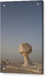The Strange Eroded Formations Acrylic Print by Taylor S. Kennedy
