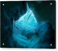 Undersea Cave Acrylic Print