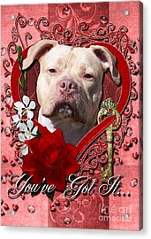 Valentines - Key To My Heart Pitbull Acrylic Print by Renae Laughner