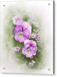 Viola Acrylic Print by Bonnie Willis