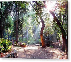 Walk In The Park Acrylic Print by Randy Sprout