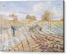 White Frost Acrylic Print by Camille Pissarro