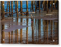 Hastings Pier Acrylic Print by Dawn OConnor