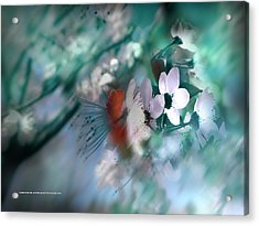 Acrylic Print featuring the photograph 2012 Spring by Alfonso Garcia