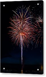 20120706-dsc06458 Acrylic Print by Christopher Holmes