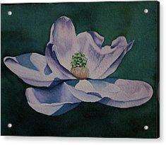 2.29.12 Steel Magnolia Acrylic Print by Teresa Beyer