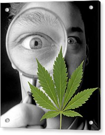 Cannabis Research Acrylic Print by Victor De Schwanberg