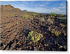 Craters Of The Moon Acrylic Print by Elijah Weber