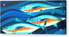 3 Fish School Acrylic Print by Mark Jennings
