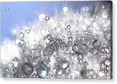 Fleur De Cristal Acrylic Print by Sylvie Leandre