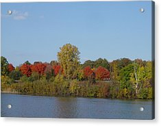 October In Michigan Acrylic Print by Margrit Schlatter