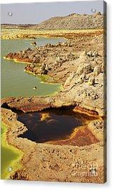 Potassium Salt Deposits, Dallol Acrylic Print by Richard Roscoe