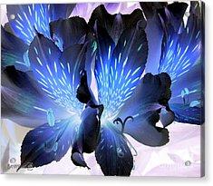 Princess Lily Named Marilene Staprilene Acrylic Print