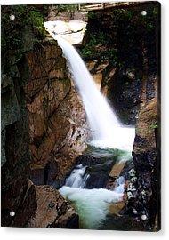 Sabbaday Falls Acrylic Print by David Gilman