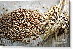 Wheat Ears And Grain Acrylic Print by Elena Elisseeva