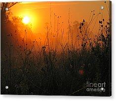 Sunset Acrylic Print by Odon Czintos