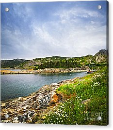 Atlantic Coast In Newfoundland Acrylic Print by Elena Elisseeva
