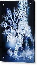 Christmas Ornaments Acrylic Print by HD Connelly
