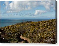 Cornish Seascape St Agnes  Acrylic Print by Brian Roscorla