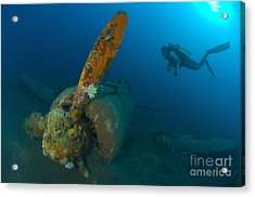 Diver Explores The Wreck Acrylic Print by Steve Jones