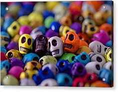 Friends Acrylic Print by Mike Herdering