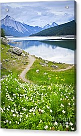 Mountain Lake In Jasper National Park Acrylic Print by Elena Elisseeva
