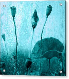 Poppy Art Image Acrylic Print by Falko Follert