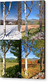 4 Seasons Chocurua Vertical Acrylic Print