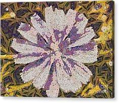 The Flower Acrylic Print by Odon Czintos