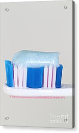 Toothpaste Acrylic Print by Photo Researchers, Inc.