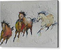 4 Wild Horses Painted Acrylic Print