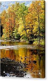Williams River Autumn Acrylic Print by Thomas R Fletcher